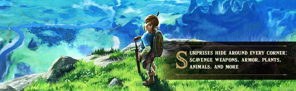 Amazon com: The Legend of Zelda: Breath of the Wild