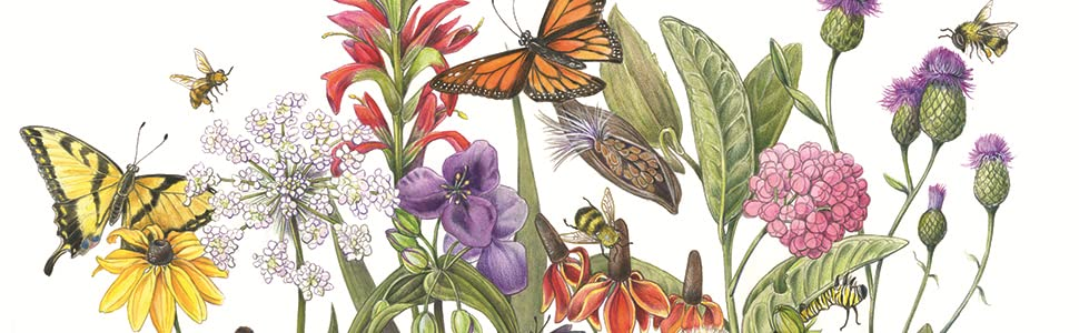 The Art of Botanical & Bird Illustration: An artist's