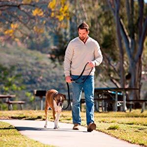 halti optifit lead leash headcollar harness dog