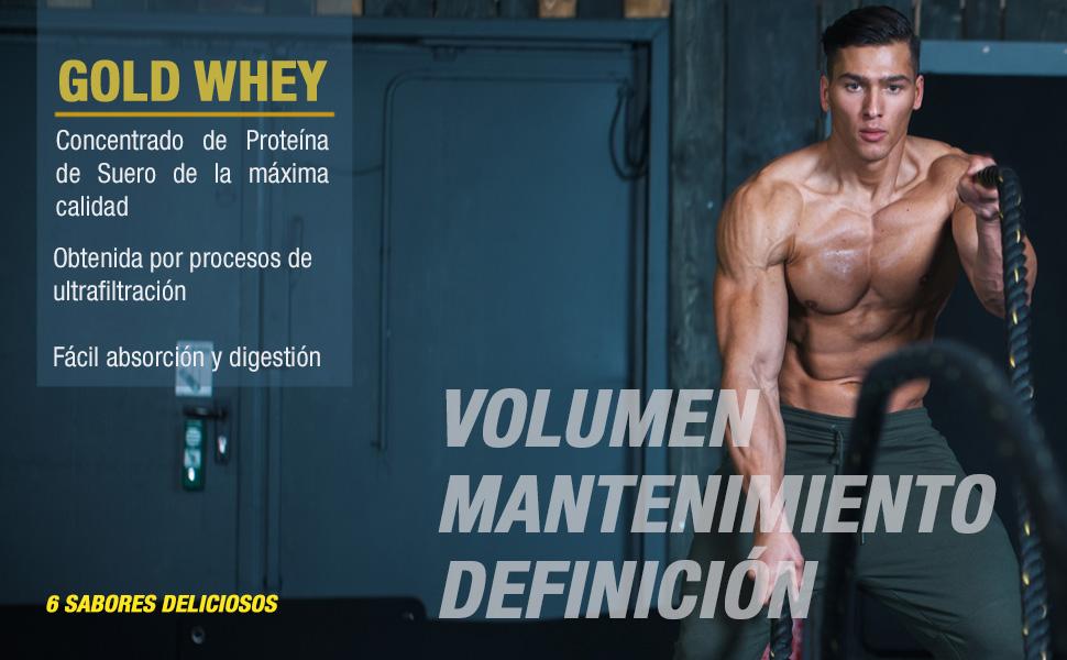 Weider Gold Whey Sabor Plátano- 500 gr. Concentrado de Proteina de Suero de la más alta calidad. Fácil absorción y digestión. Baja en grasas y ...