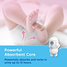 Powerful Absorbent Core