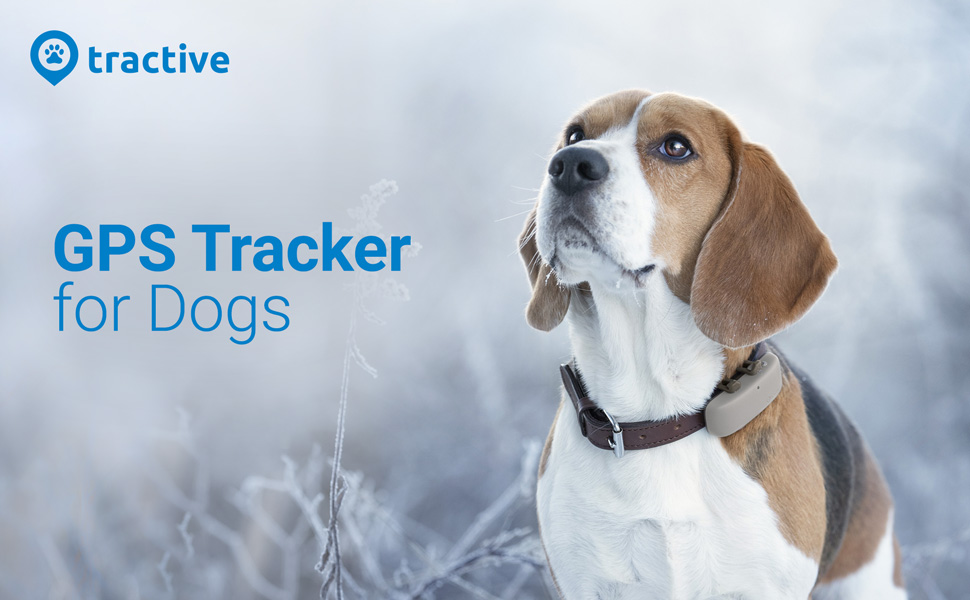 gps tracker for dogs LTE tractive waterproof unlimited range