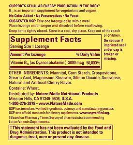 Vitamin B12 Vegetarian Food List The Fiat Car