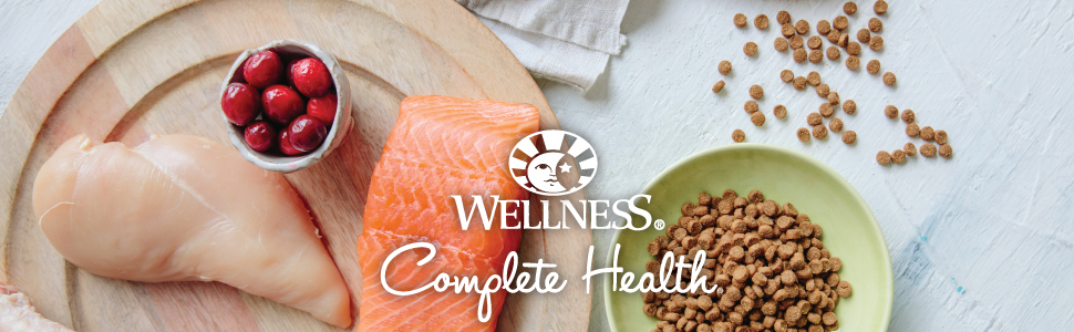 wellness complete health dry cat food