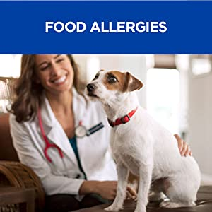 food allergies dogs canine