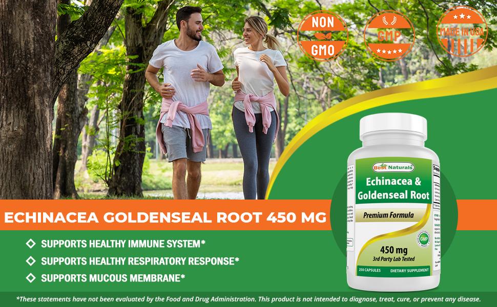 Echinacea Goldenseal 450 mg 250 Capsules