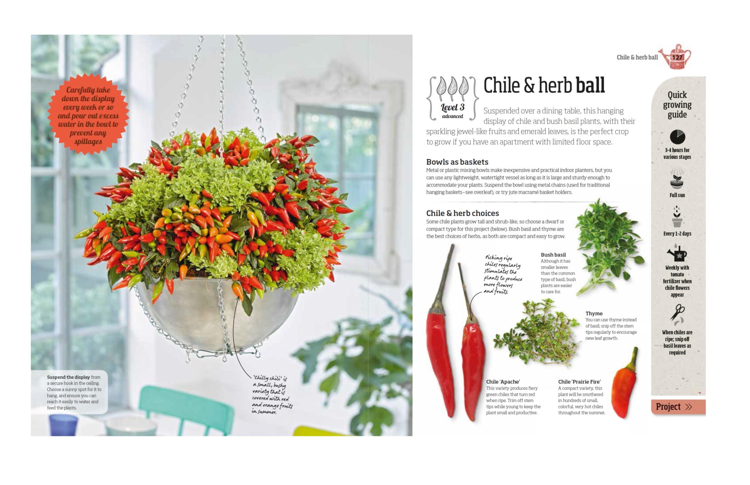 Indoor Edible Garden: Creative Ways to Grow Herbs, Fruits, and ...