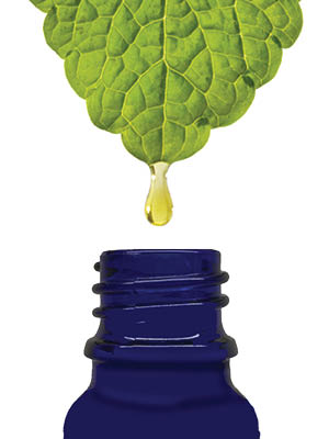 Forces of Nature -Natural, Organic Nail Fungus Treatment (5ml) Non GMO, No  Harmful Chemicals,