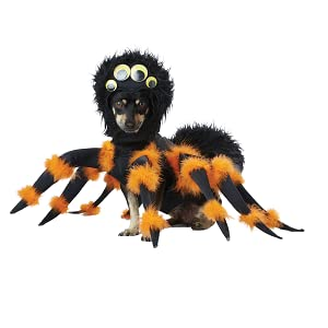 Spider Dog Costume, Spider Pet Costume, Spider Puppy Costume, Pet Costume, Apparel for Dogs
