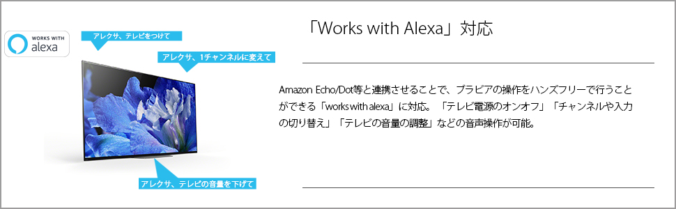 works with alexa アレクサ