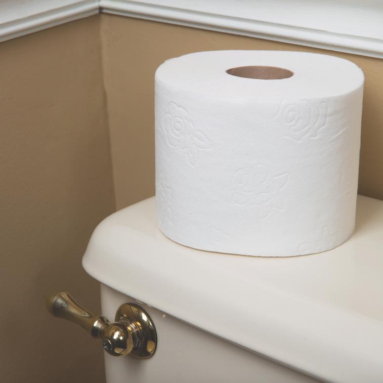 Amazon Com Panda Ultra Premium Toilet Paper White 48