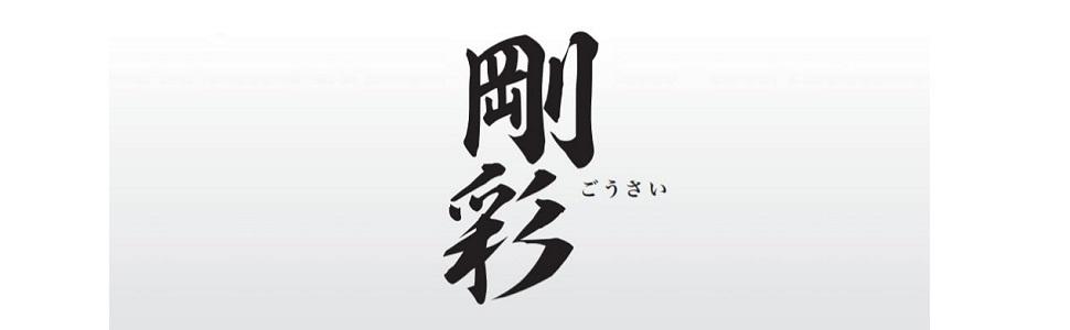 ベッセル(VESSEL) 剛彩ビット 精密タイプ
