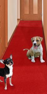 廊下敷 ペット対応