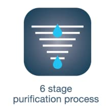 6 stage