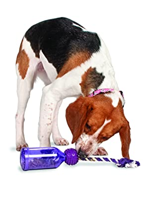Pet Supplies : Pet Toy Ropes : PetSafe Busy Buddy Tug-A