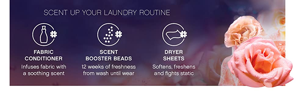 scent up your laundry routine with downy fabric conditioner, scent booster beads, dryer sheets