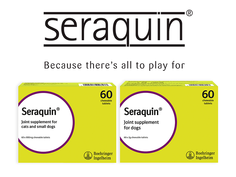 Seraquin joint supplement for cats and dogs products