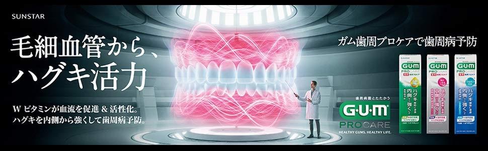 GUM ガム 歯周プロケア デンタルペースト