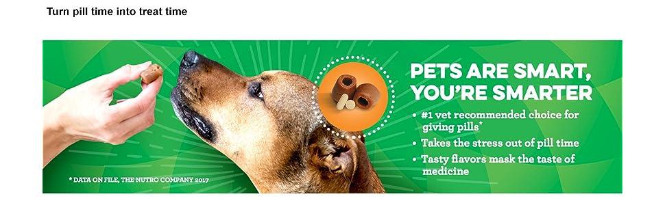 Pill, pockets medicine, medication, dog, Greenies, treats, vet, veterinarian, dog, treat