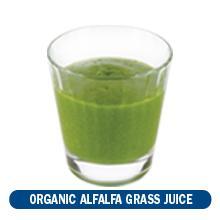 organic alfalfa grass juice
