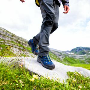 Amazon.com | Salomon Women's Quest 4D 2 GTX Hiking Boot