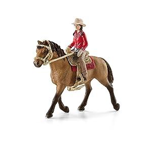 western rider, horse club