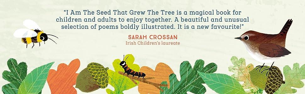 Sarah Crossan, children's laureate, nature poems, Nosy Crow, nature artwork, bee, wren, bird, autumn
