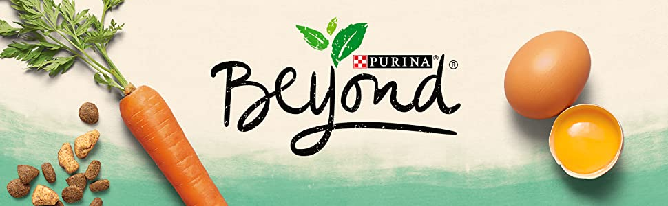 Purina Beyond cat food