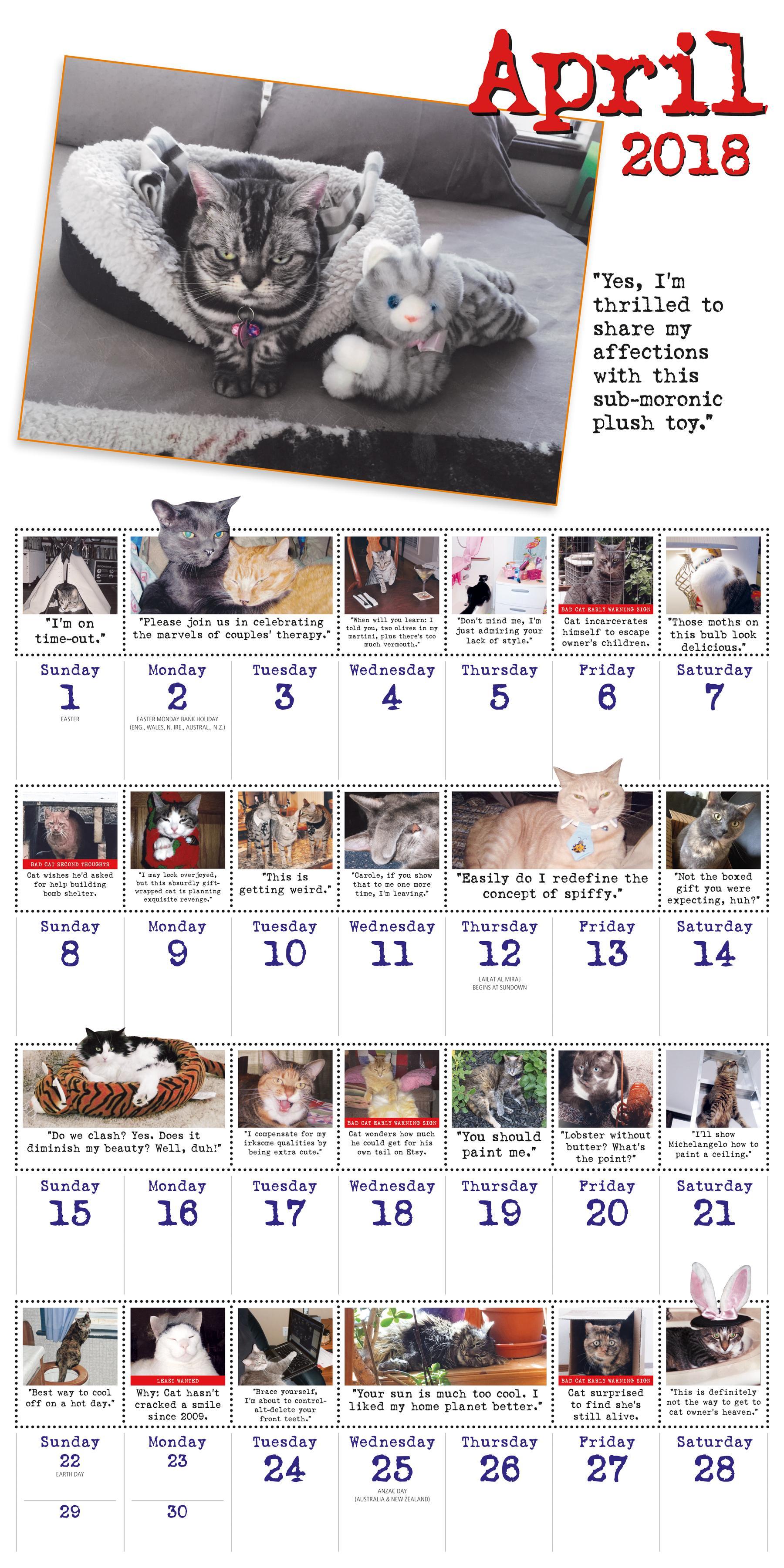 Calendar Book 2018 : Bad cat wall calendar workman publishing