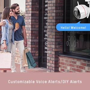wireless camera with speaker, wifi camera voice alerts