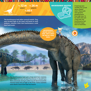 Dinosaurs, augmented reality, interactive, science, nature