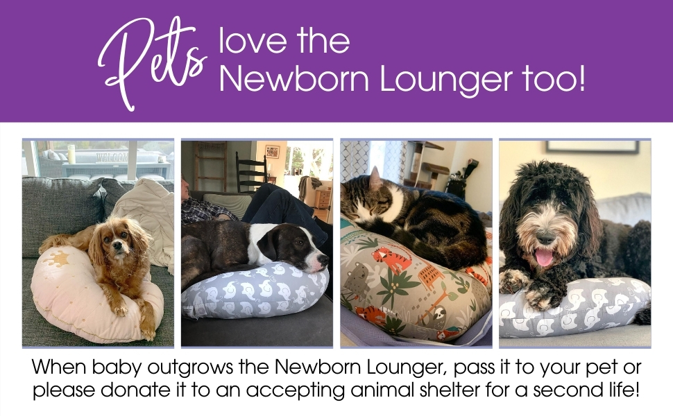Recycling your Boppy, Boppy Newborn Lounger, pet beds, dog bed, cat bed, Recycle, Boppy uses