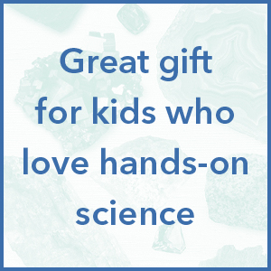 Great gift for kids who love hands-on science