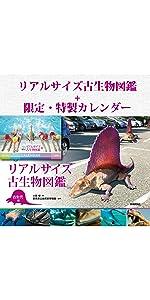 リアルサイズ 古生物 図鑑 カレンダー