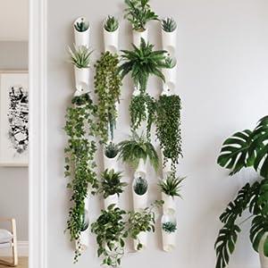 Jardinière, pot, porte plante, plante, decoration murale