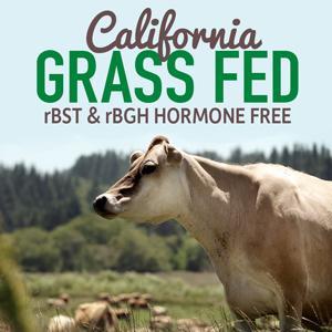 garden of life california grass fed whey