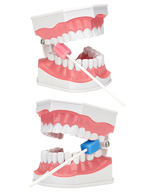 disposable oral swabs disposable dental swabs disposable mouth swab sponge