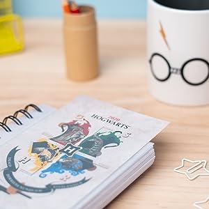 ERIK - Agenda anual 2020 Harry Potter, día página (11,4x16 cm)