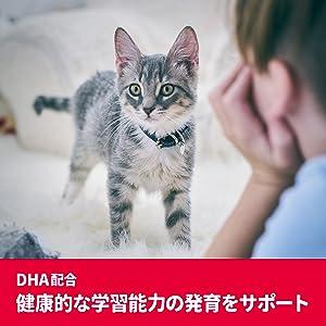 SD PRO 猫 発育