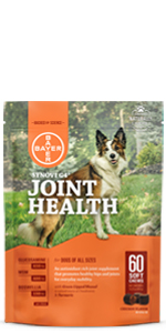 synovi g4 joint health