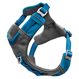 journey air harness, dog harness, kurgo, no pull harness, adventure harness, large dog harness