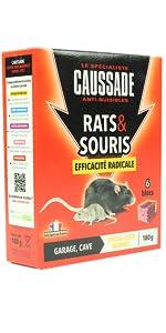 RATS SOURIS BLOCS