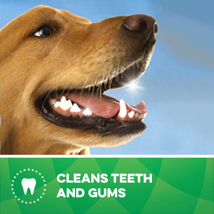 GREENIES Dental Chews help clean teeth all the way down to the gumline.