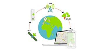Weenect Dogs 2 - El collar GPS para perros más pequeño del mundo ...