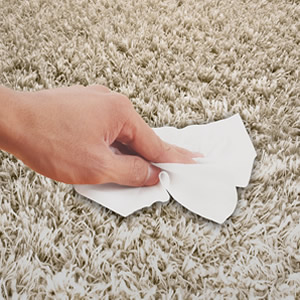 Carpet Cleaning Wipes
