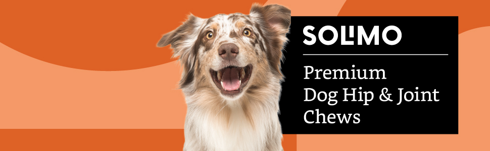 Solimo Premium Dog Hip and Joint Chews