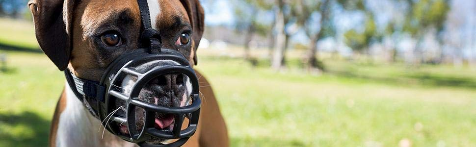baskerville muzzle the company of animals humane safe comfortable