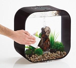 Oase biOrb Kratzerentferner Set für Aquarien