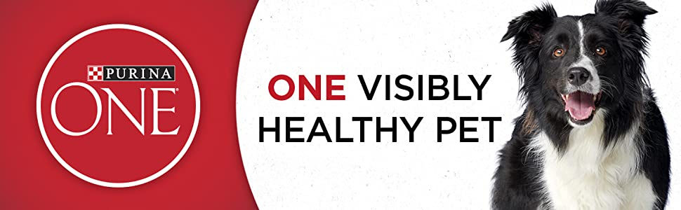 Purina ONE dog food for one visibly healthy pet