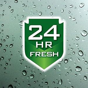 24 Hr Fresh